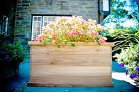 Teak Planter/Tree Box - 36x20x20