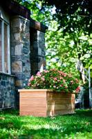 Teak Planter/Tree Box - 48x20x20
